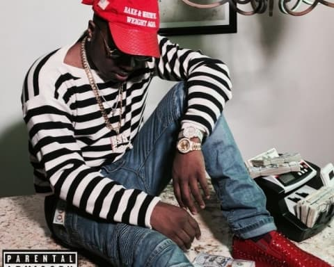 New Music Troy Ave - Why