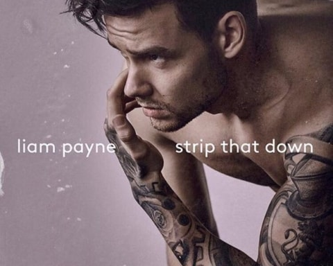 New Music Liam Payne (Ft. Quavo) - Strip That Down