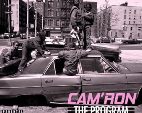 Stream Cam'ron's New The Program Mixtape