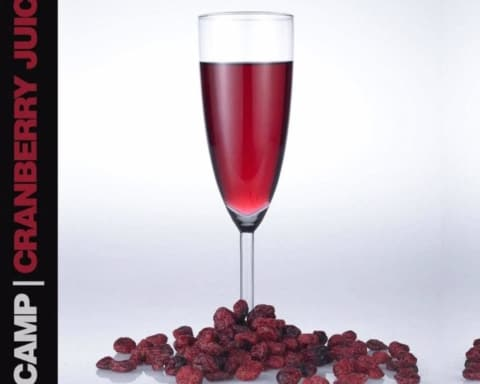 New Music K Camp - Cranberry Juice