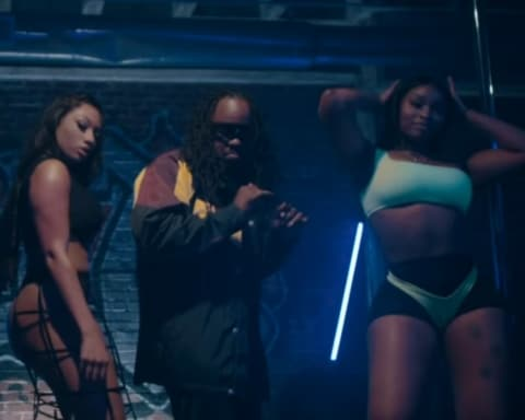 New Video Wale (Ft. Megan Thee Stallion) - Pole Dancer