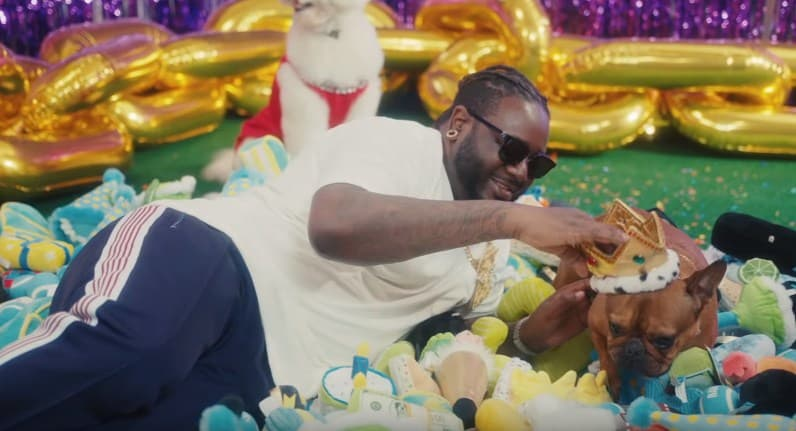 New Video T-Pain - It's My Dog Birthday